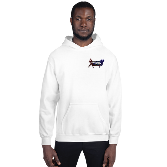 1st and 15 Sports Talk Unisex Hoodie