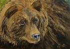 Grizzly, 7''x10'', Acrylic on Canvas Boa