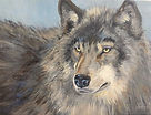 Grey Wolf #1, 7''x10'', Acrylic on Canva