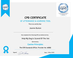 certificate-help-my-dog-is-scared-of-the