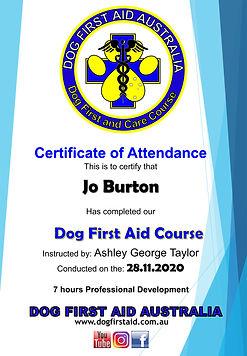 Jo-Burton-1.jpg