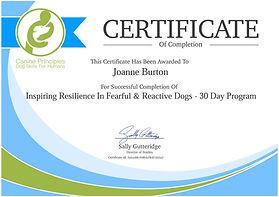 certificate inspiring resillience no dat