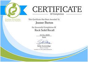 JO certificate-rock-solid-recall.jpg