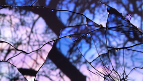 Holographic Universe: The Metaphysics of Mirror Magic
