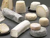 Logo producteur fromage de chèvre
