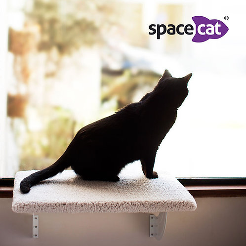 Space Cat Orion