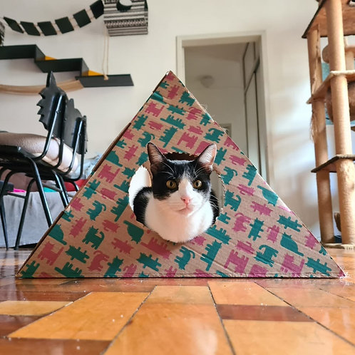 PiramiCat