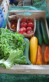 Petit panier de légumes d'été