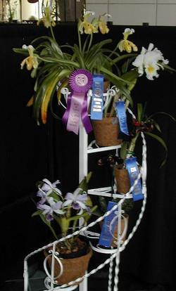 Roberts Flower Supply