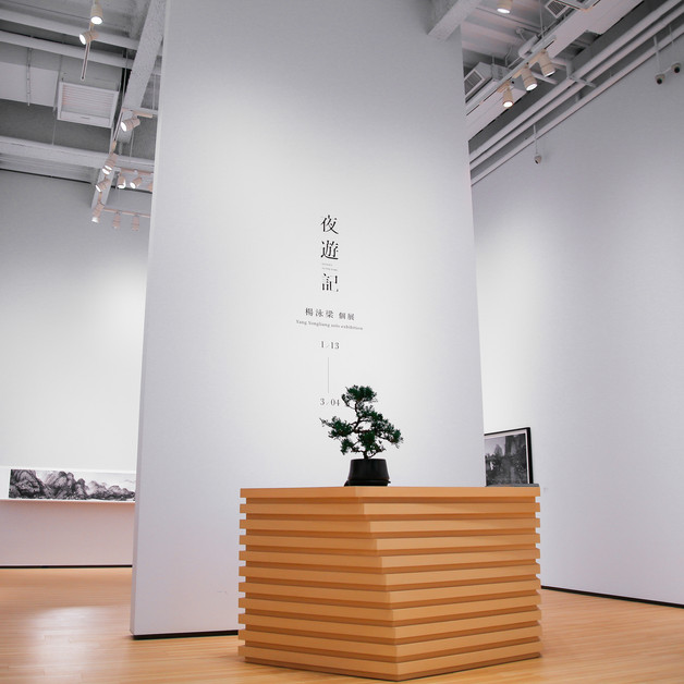 Journey to the Dark : Yang Yongliang solo exhibition