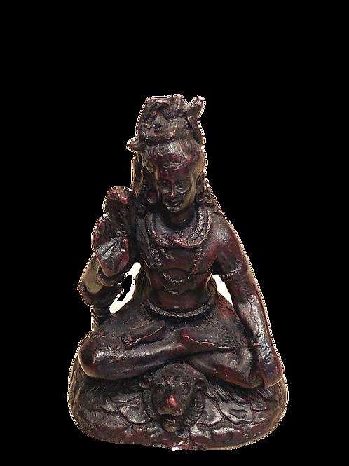 Mini Shiva