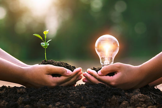 hand-holding-young-plant-ligh-bulb-conce