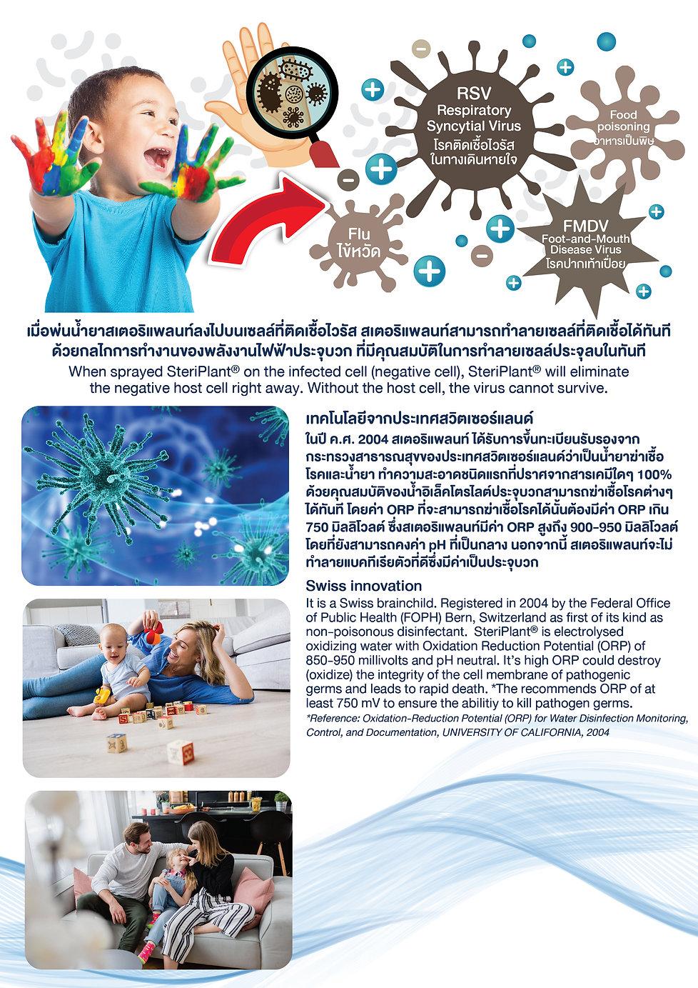 Brochure Service 02-web-01.jpg