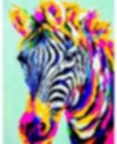 Brilliant Zebra 21 Feb.jpg