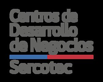 Centros de Desarrollo de Negocios