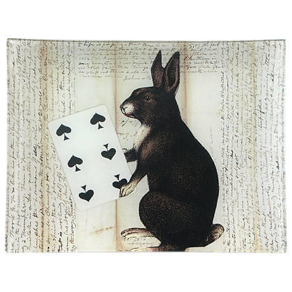 John Derian Magician's Apprentice Decoupage Rectangular Tray
