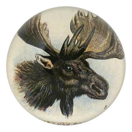 John Derian Moose Decoupage Domed Paperweight