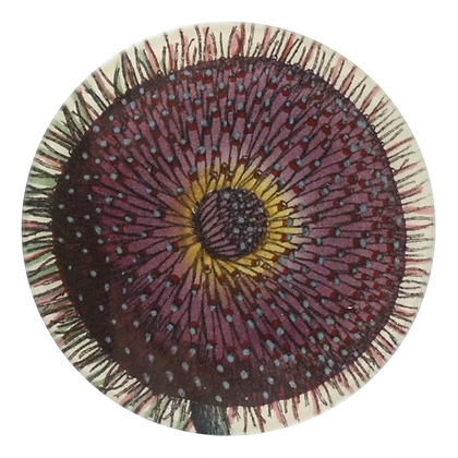 John Derian Fringe Decoupage Round Dish