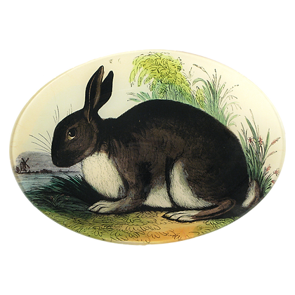 John Derian Rabbit Decoupage Oval Dish