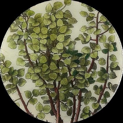 John Derian Branches Decoupage Round Plate