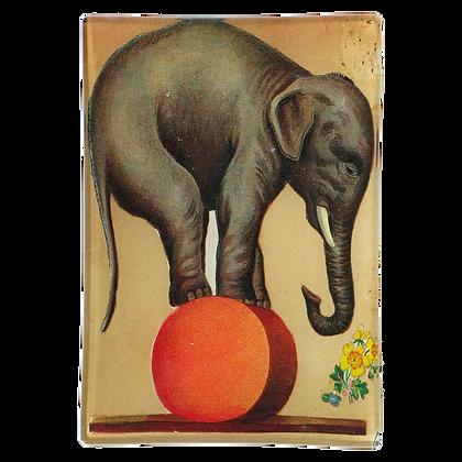John Derian Circus Elephant Decoupage Rectangular Tray