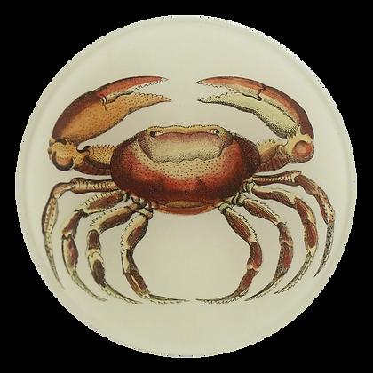 John Derian Oval Crab Decoupage Round Dish