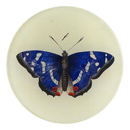 John Derian Deep Blue Butterfly Decoupage Round Dish