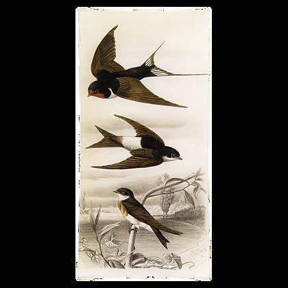 John Derian Swallow 3 Birds Decoupage Rectangular Pencil Tray