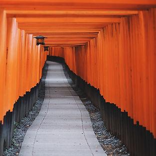 photo-orange square.jpg