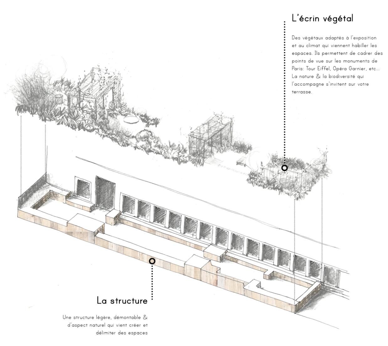 Structure du jardin