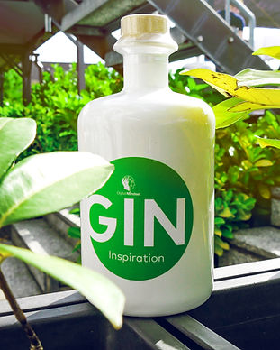 gin_flasche.jpg
