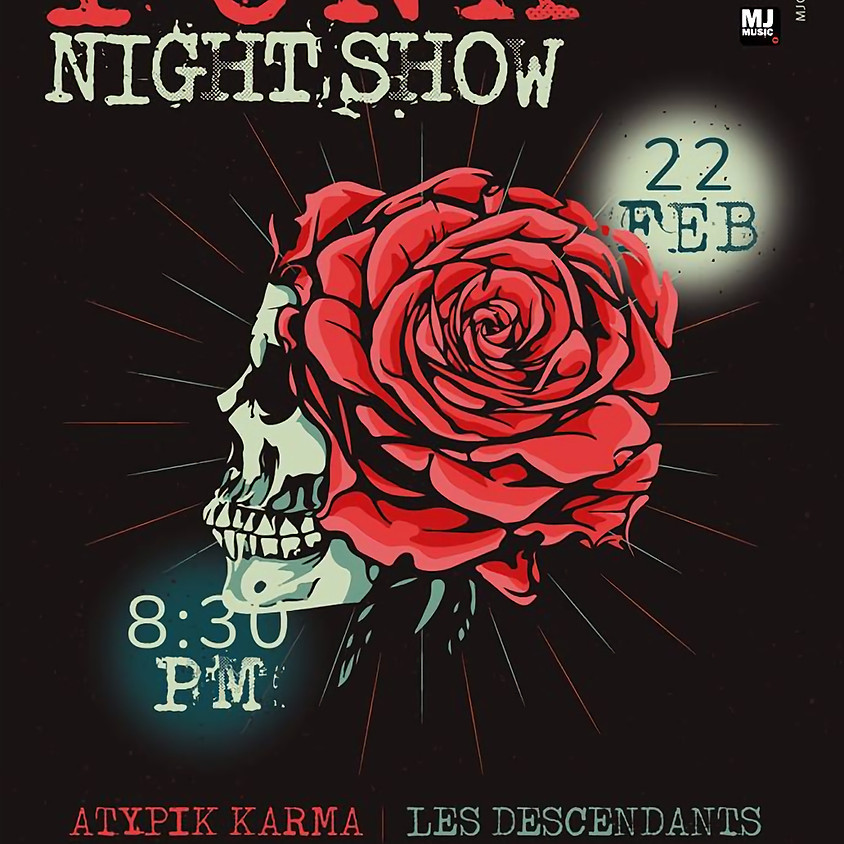 Punk Night Show - Punk concert #2