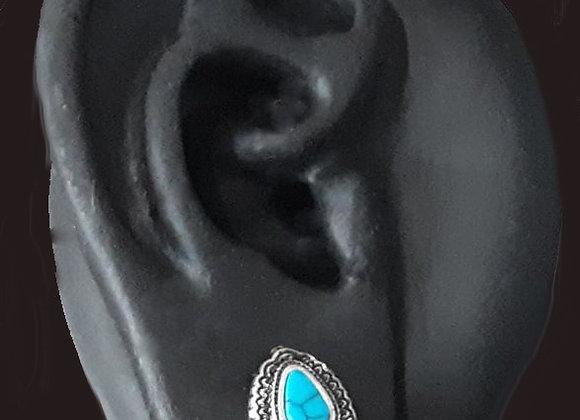 Turquoise Guage Jewerly