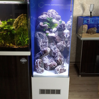 Beta Akvaryum - Akvaryum Çözümleri (250)