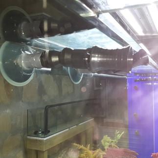 Beta Akvaryum - Akvaryum Çözümleri (268)