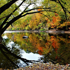 Fall's Reflection by Randy Swaim