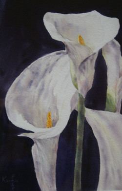 Stately Lillies