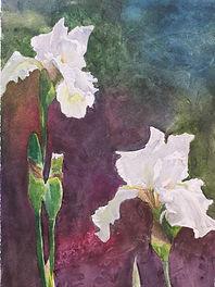 Linda Tyler, Emma's Iris.jpg
