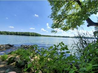 Sylvan Lake at Gene Stratton Porter Home