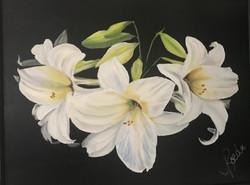 Joanne Roeder, Easter Lilys