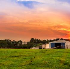 Indiana Sunset by Larry Lato