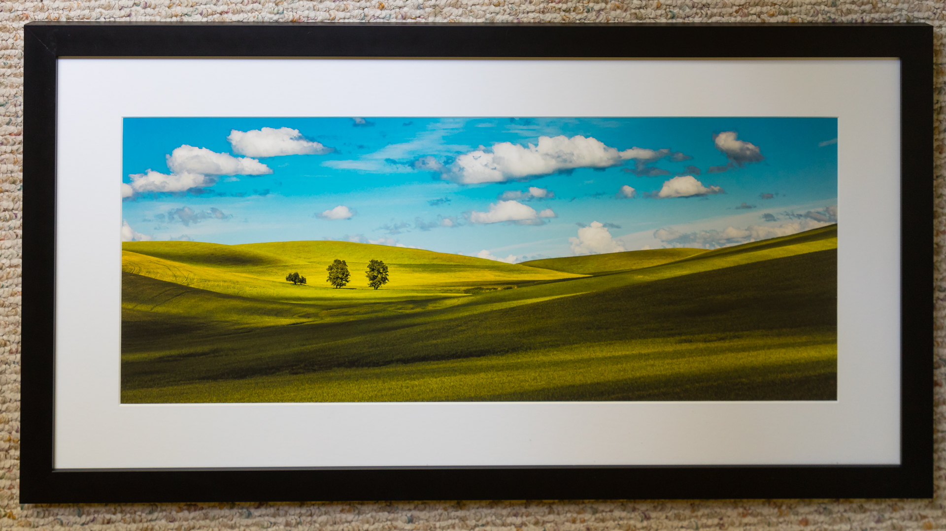 Michael Jack, Palouse Trees