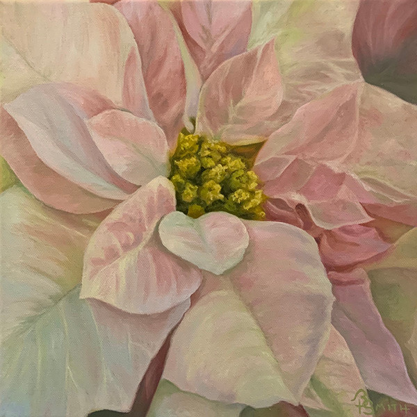 Brenda Smith, Flores de Noche Buena Blanco