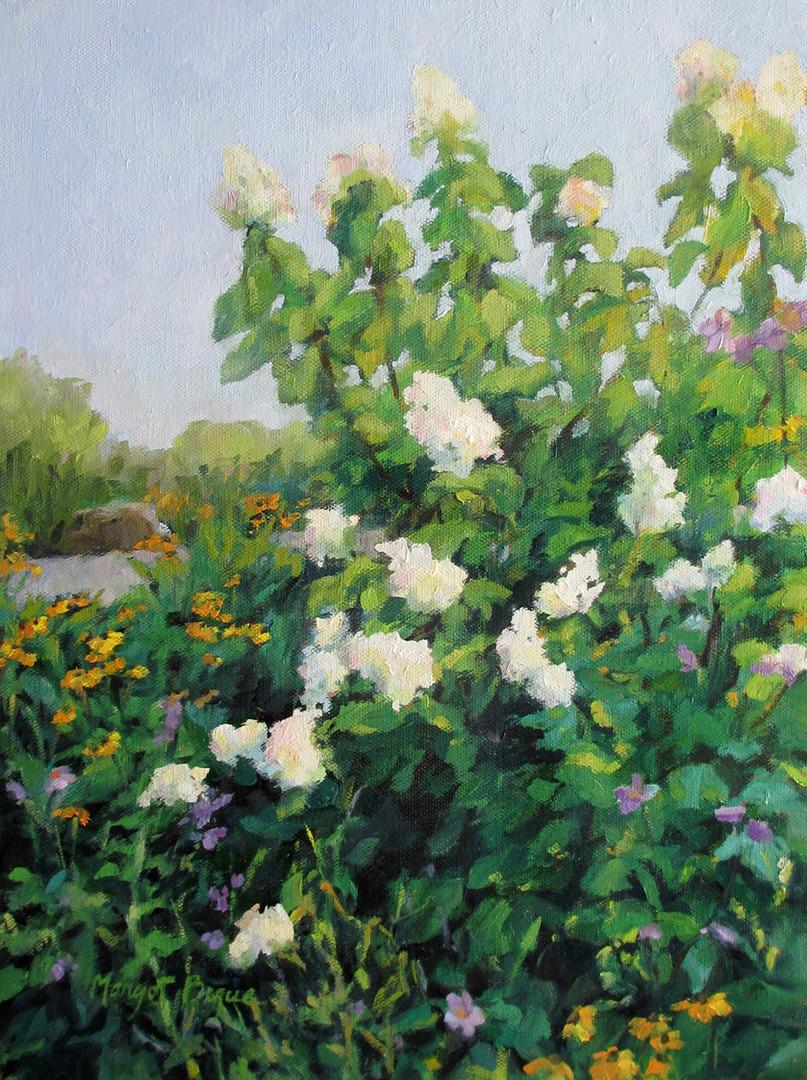 Hydrangeas in the Garden