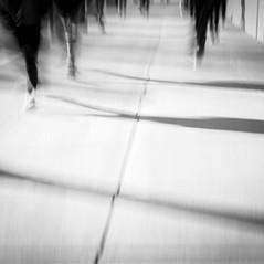 Making Strides by Rona Schwarz