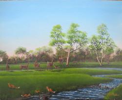 Spring at Cool Creek