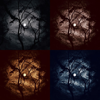 Harvest Moon Moods by Sue Payne