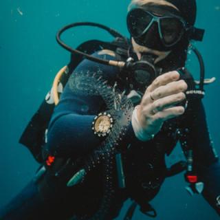 Plongeur à Tofo - Mozambique