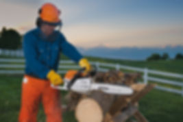Stihl MS 261 Commercial Chainsaw