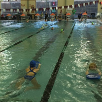 Swim for Sopris - Oct 31, 2015